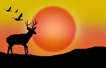 Against the background of the sunset, animals