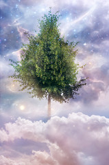 Wall Mural - Magic nature mystical tree with stars, cloudy sky and Universe like a spiritual, religious, fivine concept