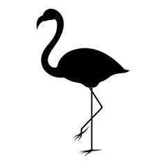 Vector image of a silhouette of a flamingo bird standing on one leg