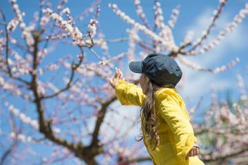 花を見上げる女の子