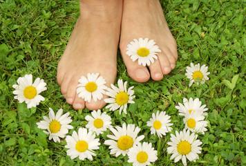 Healthy feets, gesunde Füße, Füße, gesund, Füsse, Wiese, Margeriten, Textraum, copy space