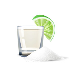 Vector realistic tequila shot lime salt mexico