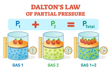 Dalton's law, chemical physics example information poster with partial pressure law.Educational vector illustration.