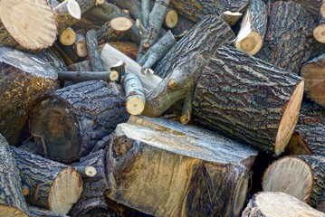 A pile of brown firewood and logs in the yard