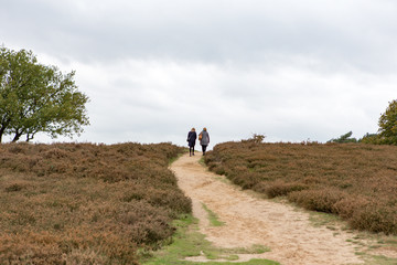 2 women walk up al hill on a sandy path at the Blaricummerheide.