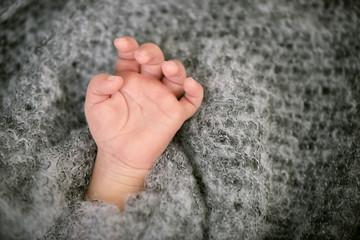tiny hand of newborn baby