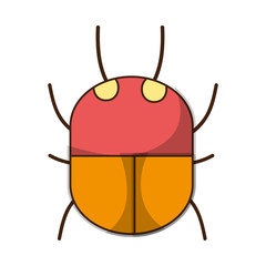spider insect animal danger symbol