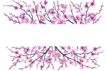 Banner with cherry branch pink flowers. Japan sakura blossom. For decoration, greeting card, invitation. Watercolor hand drawn painting illustration isolated on a white background.