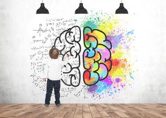 Cute little boy writing drawing marker brain