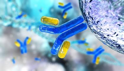 antibodies, immunoglobulins