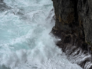 Ireland, County Clare, Loop Head. Seagull in the waves broken on the cliff.