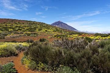 Teneriffa - Fasnia Vulkan Wanderweg mit Teideblick