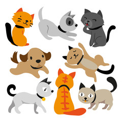 cat and dog character design