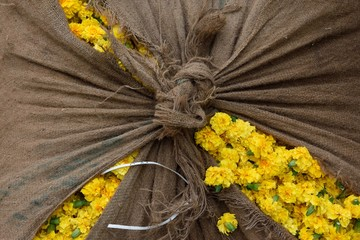 Yellow flowers in a flower market in Jaipur, Rajasthan, India.