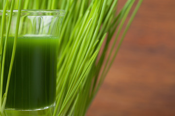 Wheat grass juice. Detox and fitness concept. Superfood.