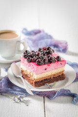 Delicious cake with black currant on white porcelain