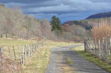 Avant la pluie, chemin en Auvergne