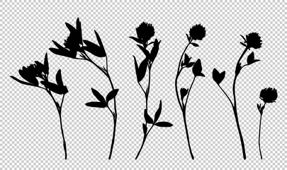 Clover flower silhouettes isolated on white background.