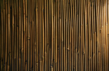brown decorative bamboo background pattern layered next to each other. natural bamboo stakes green brown