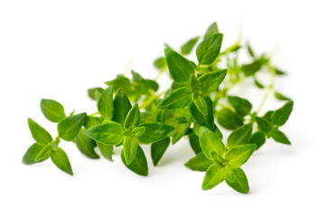 fresh herb, fresh thyme isolated on white