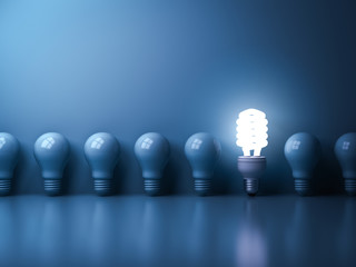 Eco energy saving light bulb , One glowing compact fluorescent lightbulb standing out from unlit incandescent bulbs reflection on blue background , individuality and different concept . 3D rendering.