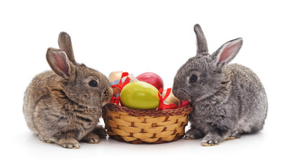 Rabbits and Easter basket.