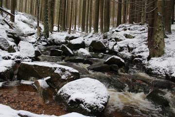 Wildbach im Winter
