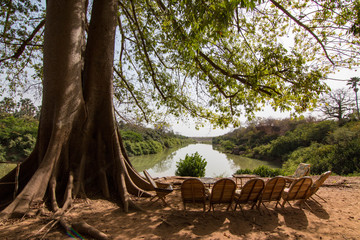 The Gambia River in Niokolo-Koba National Park in Senegal, West Africa
