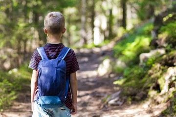 Little child boy with hikers backpack travelling in forest
