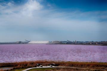 Les étangs roses des Salins du Midi vu depuis les remparts de Aigues Mortes