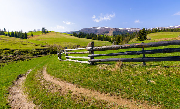 country road through grassy rural hillside. lovely springtime scenery in mountainous area