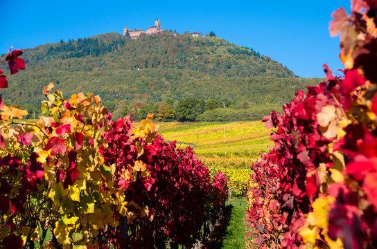 Chateau du Haut Koenigsbourg, Vosges, France