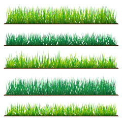 Set of Backgrounds Of Green Grass, Isolated On White Background, Raster Illustration