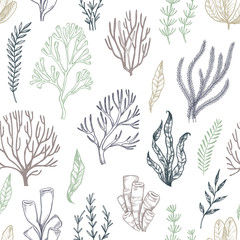 Hand drawn vector seamless patterns. Seaweed. Background with herbal plants in sketch style. Perfect for textile, fabric, invitations, cards, leaflets, prints etc
