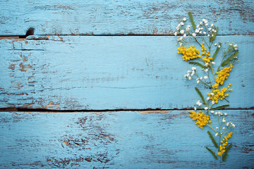 Mimosa and gypsophila flowers on blue wooden table