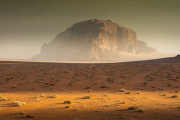 morning light in desert Wadi Rum in Jordan
