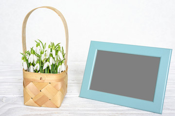 blank photo frame with spring snowdrops flowers in a wicker basket on white wooden table