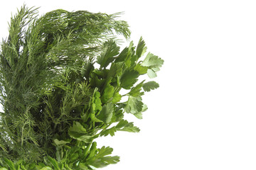 a bunch of green parsley and dill close
