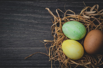 Easter concept: painted eggs in nest on dark wooden background