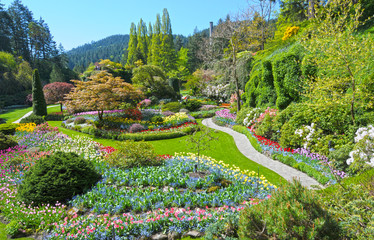 Lawn and Flower beds in the Spring with Lush colors, Victoria, Canada
