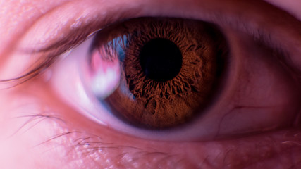 macro photo of the pupil of a person