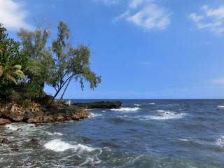 Beautiful tropical Hawaiian coastline