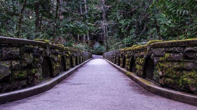 Whatcom Falls, Bellingham, Washington, USA.