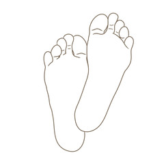 Female or male foot soles, barefoot, bottom view. Vector illustration, hand drawn cartoon style isolated on white, black and white contour