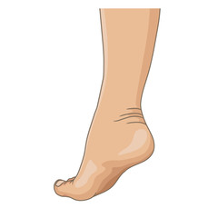 Female legs barefoot, side view. Vector illustration, hand drawn cartoon style isolated on white.