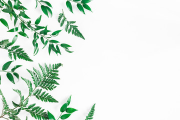 Leaf pattern. Green tropical leaves on white background. Flat lay, top view, copy space