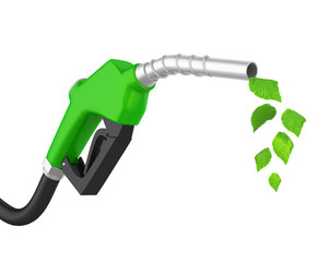 Gas Pump Nozzle with Leaf Isolated