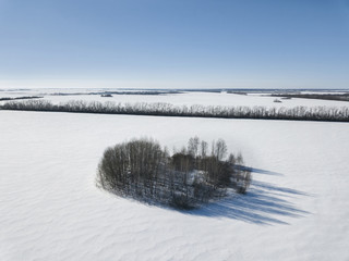 Plot in shape of heart with trees on field. Winter landscape. Aerial view