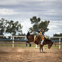 Bucking Horse At A Country Rodeo