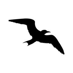 Icono plano silueta gaviota en color negro